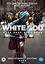 White God [DVD] [UK Import] hier kaufen