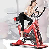 COOLBABY Vertical Indoor Exercise Bike, Silent Cycle with Racing Bike with Adjustable Handlebar and Seat, Aerobic Training Fitness Cardio Bike, Ideal Cardio Trainer, Fitness Bike And Trainer