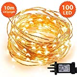 Micro Fairy Lights 100 LED 10m Warm White Indoor Christmas Lights Festive Wedding Bedroom Novelty Decorations Tree String Lights Mains Powered 32ft Lit Length 3m/9ft Lead Wire Copper Cable