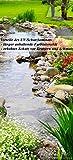 Wallario Selbstklebende Türtapete mit Schutzlaminat, Motiv: Blumen am Teich - Größe: 93 x 205 cm in Premium-Qualität: Abwischbar, brillante Farben, rückstandsfrei zu entfernen