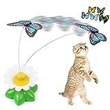 Everpert Funny Pet Cat Toys farfalla gatto gattino giocare giocattoli Pet Seat scratch giocattolo