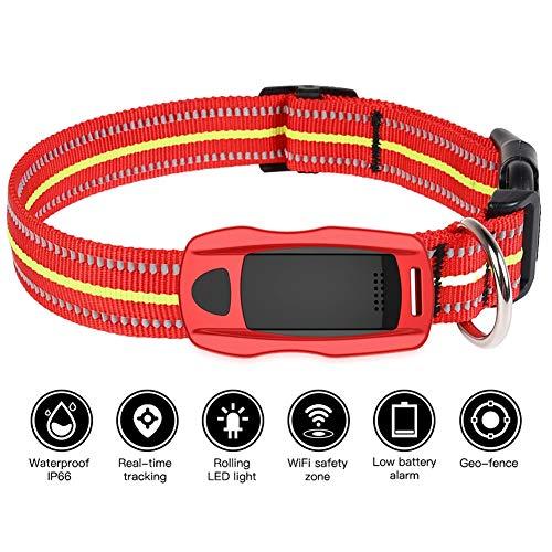 Rastreador Tractive de GPS para Mascotas