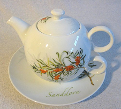 51jxFNCEd%2BL - magicaldeco 4 teilig- Tasse- Teekanne- Untertasse -Porzellan- Sanddorn -Tea for one- 0,4 L