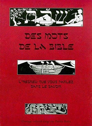 Des mots de la Bible : L'hébreu que vous parlez sans le savoir par Patrice Rolin