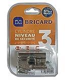 Bricard 11734 Cylindre Débrayable 5 clés ASTRAL 2,9 en laiton nickelé 10 pistons, 2 entrées 30+40, protection contre le perçage et le crochetage. Carte personnelle, Acier, 70