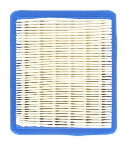 Luftfilter für Briggs