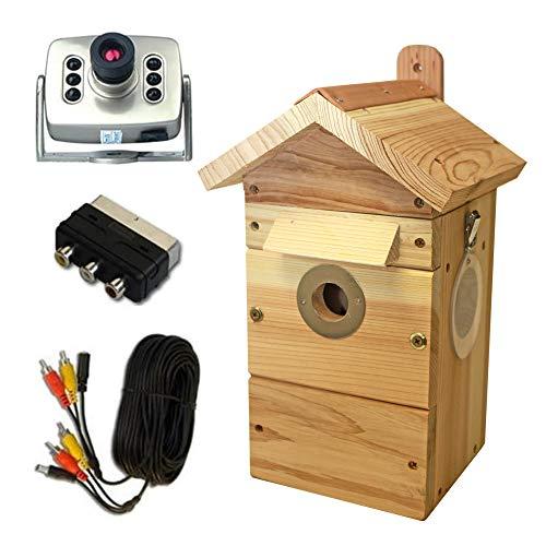 Garden Secrets Zedernholz Vogelnistkasten & Farb-Nachtsicht-Kamera mit Ton, zur Beobachtung von Fütterungen- mit Nisthöhle für Verschiedene Arten & Fütterungskamera-Kamera