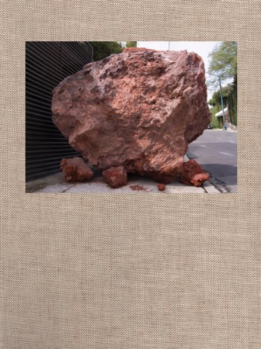 Jimmie Durham: Amoxohtli/Libro De Carretera/A Road Book por Jimmie Durham