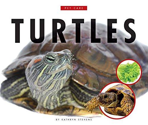 Turtles (Pet Care) -