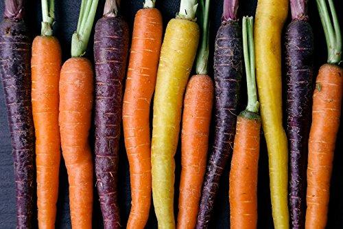Colores Zanahorias Mezcla - Mín. 100 Semillas