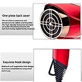 Secador de cabello profesional Salon de 2200 vatios: secador de cabello de iones negativos, 2 velocidades de calentamiento.