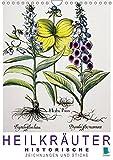 Heilkräuter: Historische Zeichnungen und Stiche (Wandkalender 2018 DIN A4 hoch): Farblithografien und Kupferstiche historischer Pflanzenstudien: ... ... [Kalender] [Apr 01, 2017] CALVENDO, k.A - CALVENDO