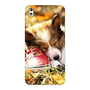 Enticing Cute Sleeping Puppy Back Case Cover for HTC Desire 816s