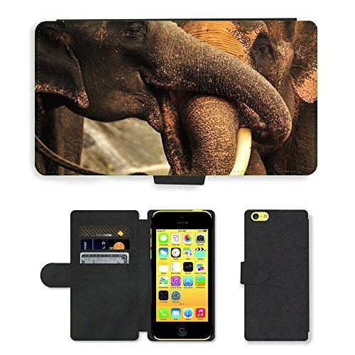 Grand Phone Cases PU Leder Leather Flip CASE Cover HÜLLE ETUI Tasche Schale // M00141417 Elephant Trunks Thailand Natur // Apple iPhone 5C