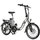 Asviva B13 Klapprad E-Bike silber