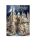 Noble Collection- Harry Potter Collectibles, Idea Regalo, Personaggio, Multicolore, NN7074