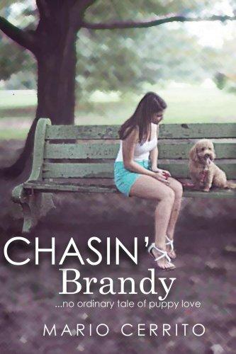 Chasin' Brandy (English Edition)