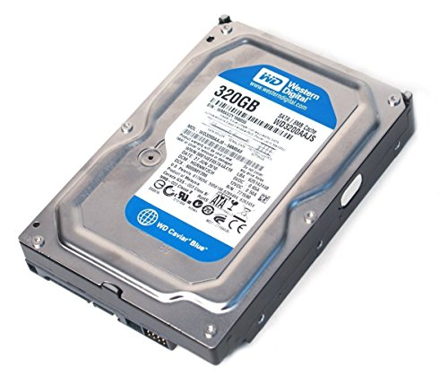 western-digital-caviar-blue-disco-rigido-interno-sata-ii-7200-rpm-cache-8-mb-per-pc-mac-cctv-dvr-nas