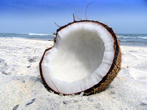 El aceite de coco elixir: el milagro,el milagro, cura aceite de coco por jesus xavier