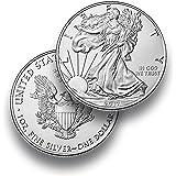 Moneda de Plata American Eagle * envase en monedas Cápsula Individual * 1onza Plata