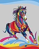 WOWDECOR DIY Malen nach Zahlen Kits Geschenk für Erwachsene Kinder, Malen nach Zahlen Home Haus Dekor - Buntes Pferd 16 x 20 Zoll (Z20, Ohne Rahmen)
