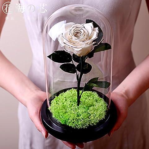 Fleur rose éternelle avec couvercle en verre pour la Saint