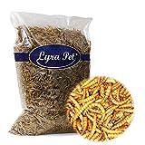 Lyra Pet 5 kg Mehlwürmer getrocknet Futter für Vögel Fische Nager Reptilien Igel