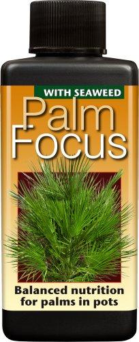 palm-focus-unique-liquid-concentrated-fertiliser-100ml