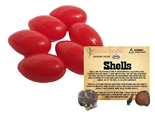 silly-putty-gift-set-original-bundle-w-universal-truth-shells-by-universal-specialties