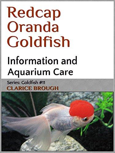 redcap-oranda-goldfish-english-edition