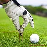 Festnight Golf Ball Marker Pitch Mark Green Divot Repair Tool Golf Pitchfork Golf Training Aids