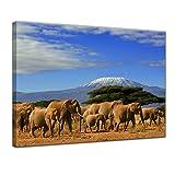 Bilderdepot24 Impression d'art - Éléphants au Kilimandjaro - 40 x 30 cm - Images comme Une Impression de Toile - la Faune - Troupeau d'éléphants en randonnée