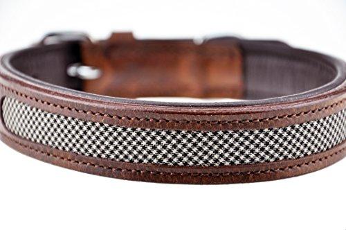 Schnüffelfreunde Hundehalsband aus Leder (XL - 46-55cm, Tweed (kariert) /...
