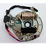 Beehive Filter 90cc 110cc 125cc PIT DIRT BIKE STATOR PLATE PICKUP MAGNETO COIL ROTOR PITBIKE
