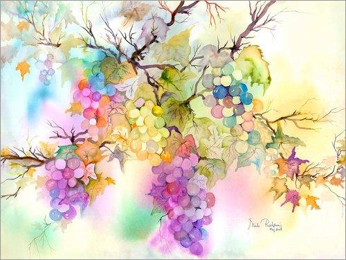 Posterlounge Alu Dibond 160 x 120 cm: Fruit on The Vine von Neela Pushparaj/Bridgeman Images