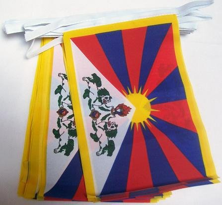 Foto de AZ FLAG Guirnalda 12 Metros 20 Banderas del Tibet 45x30cm - Bandera TIBETANA - Budista 30 x 45 cm - BANDERINES