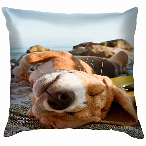 vintage cap Sunbathing Beagle Puppy Portrait Lying Sea Animals Wildlife Dog Parks Outdoor Throw Pillow Case Cushion Cover Pillowcase Watercolor for Couch 18X18 Inch - Tanning Blend