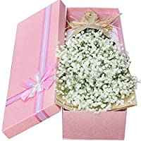 Aofocy Gypsophila Fake Flower Simulation Real Artificial Cloth Flowers For Home Table Decoration Floral Wedding Bouquets 10Pcs