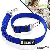 BELISY Hunde Sicherheitsgurt fürs Auto I maximale Sicherheit & Komfort I Blau
