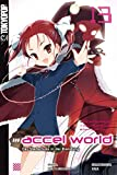 Accel World - Novel 13