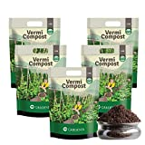Best Plant Foods - Ugaoo Vermicompost for Plants 5 Kg - Effective Review