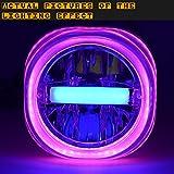 Ocamo modifiziert für Motorrad, 12–80V Universal-LED-Lampe mit Quallen-Scheinwerfer Big Pink Small Blue