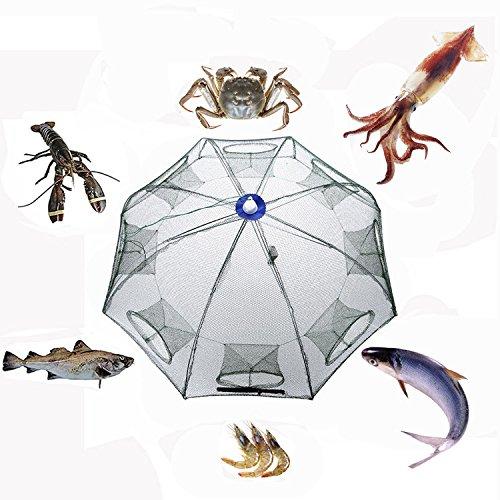 Gefaltet Angeln Net Kescher, tragbar Fisch Garnelen Minnow Crab Köder aus Mesh Falle für Outdoor Aktivitäten, 8 Hole (Minnow Net)