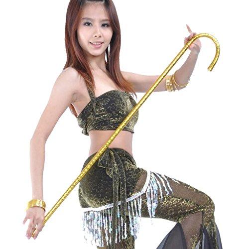 Wgwioo Bauch Tanz Cane Dance Stick Gold Silber Tanz Zubehör Geschenk Idee Spezialisiert Requisiten Bühne Verwandte Produkte Professional . Gold . 2 (Black Lace Kleid Kostüm Ideen)