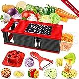 DA HENG Gemüsehobel, Vielseitiger Gemüseschneider Kartoffelschneider Obstschneider, Handschutz, Frischhaltedose - Schneider für Tomaten, Zwiebeln, Käse, Gurken usw