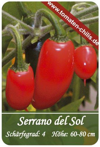 Chili Samen - 15 Stück - Serrano del Sol