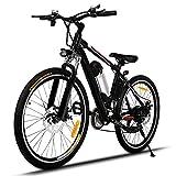 aceshin Mtb bici 21 velocità lega di alluminio con motore da 250W Bicicletta mountain bike elettrica