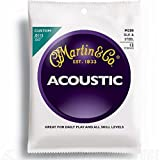 Martin M200 Akustikgitarre 0115-047 Folk Silk And Steel 12 Strings - Gitarrensaitensatz