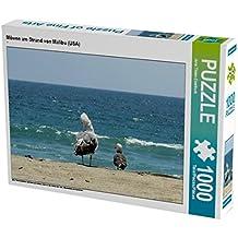 Möwen am Strand von Malibu (USA) 1000 Teile Puzzle quer: ein freies und wildes Leben an den Küsten der USA, Neuseeland und Australien (CALVENDO Tiere)