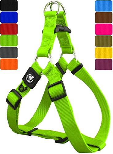 DDOXX Hundegeschirr Step-In Premium Nylon | für große, mittelgroße, Mittlere & Kleine Hunde | Geschirr Hund | Katze | Brustgeschirr | Softgeschirr | Zubehör | Grün, M - 2,0 x 53-77 cm